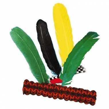 2x hoofdbanden indiaan met veer